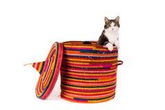 Kat in een grote kleurrijke mand Royalty-vrije Stock Foto