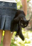 Kat en het meisje Royalty-vrije Stock Afbeelding