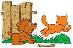 Kat en Hond Royalty-vrije Stock Fotografie