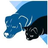 Kat en hondsilhouettenhoek Royalty-vrije Stock Fotografie