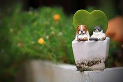 Kat en hondspeelgoed op een boompot in de tuin royalty-vrije stock foto