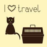 Kat en huisdierendrager Stock Afbeelding