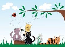Kat en Lieveheersbeestje Royalty-vrije Stock Foto's