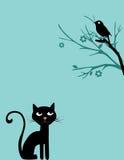 Kat en vogel op boom Royalty-vrije Stock Afbeeldingen