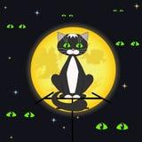 Kat en volle maan. Royalty-vrije Stock Foto