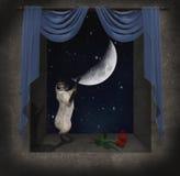Kat in het venster vector illustratie