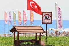 Kat het voeden punt Alanya, Turkije royalty-vrije stock afbeelding