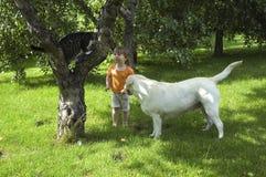 Kat, hond, boom en weinig jager stock afbeelding