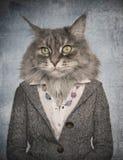Kat in kleren Concept grafisch in uitstekende stijl Stock Foto