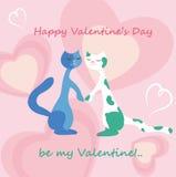 Kat in liefde Royalty-vrije Stock Foto