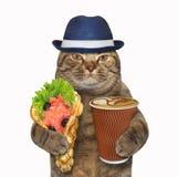Kat met bellenwafels en koffie stock foto's