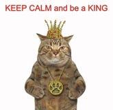 Kat met een kroon en een medaillon 2 stock afbeeldingen