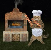 Kat met garnalen in bbq grill stock foto's