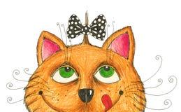 Kat met grappig kapsel Stock Foto