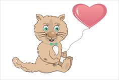 Kat met hart Stock Foto