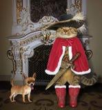 Kat met hond dichtbij een open haard stock fotografie