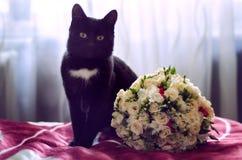 Kat met huwelijksboeket Stock Foto
