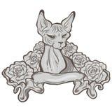Kat met lint en rozen Stock Foto's