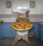 Kat met pizza in keuken stock illustratie