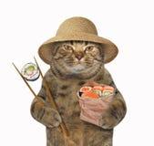 Kat met sushi en eetstokjes vector illustratie