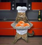 Kat met sushi in keuken worden geplaatst die stock fotografie