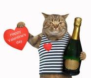 Kat met wijn en hart stock afbeeldingen