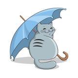 Kat onder een paraplu Stock Afbeeldingen