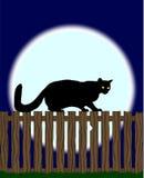 Kat op een omheining Stock Foto's