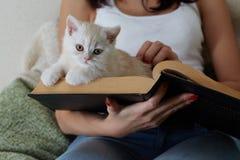 Kat op het boek Stock Fotografie