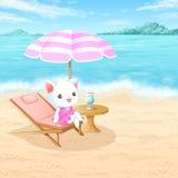 Kat op het strand Royalty-vrije Stock Foto's