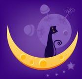 Kat op Maan Royalty-vrije Stock Afbeeldingen