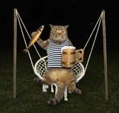 Kat op schommeling met bier stock afbeeldingen