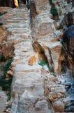Kat op treden in bergen van Petra royalty-vrije stock foto