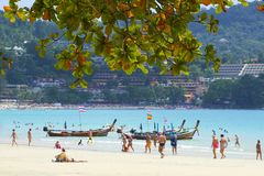 Kat plaży teren w Phuket, Tajlandia zdjęcie royalty free