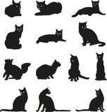Kat, portret, grafisch zwart beeld, Royalty-vrije Stock Foto's