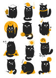Kat in seizoenen Stock Foto