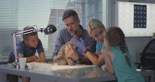 Kat worden die die bij veterinaire kliniek wordt ingeënt stock video