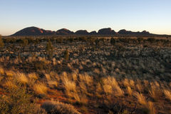 Kata Tjuta Royalty Free Stock Photography