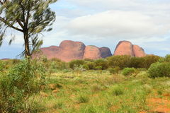 Kata Tjuta Royalty Free Stock Photos