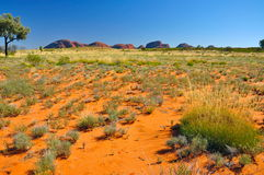 Kata Tjuta, Australia Stock Images