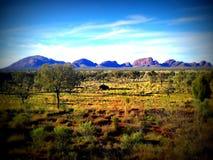 Kata Tjuta - Australia Foto de archivo libre de regalías
