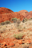 Kata Tjuta (l'Olgas) - fragment Photo libre de droits