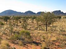Kata Tjuta landscape Royalty Free Stock Image