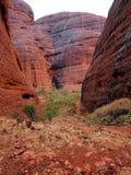 Kata Tjuta National Park, Australia Stock Images