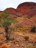 Kata Tjuta National Park, Australia Stock Image