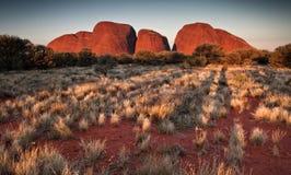 Kata Tjuta Olgas 澳洲北方领土 免版税库存图片