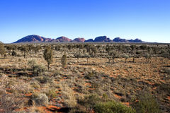 KATA TJUTA. Typical landscape and rock in central Australia Royalty Free Stock Photography