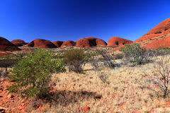 KATA TJUTA. Typical landscape and rock in central Australia Stock Photography