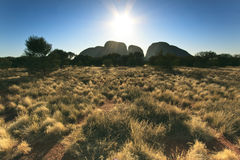 Kata Tjuta - view from the outback Royalty Free Stock Image