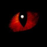 Katachtig oog vector illustratie